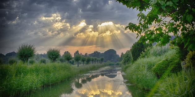 sun-rays-511029_1280
